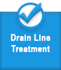 Drain Line Treatment